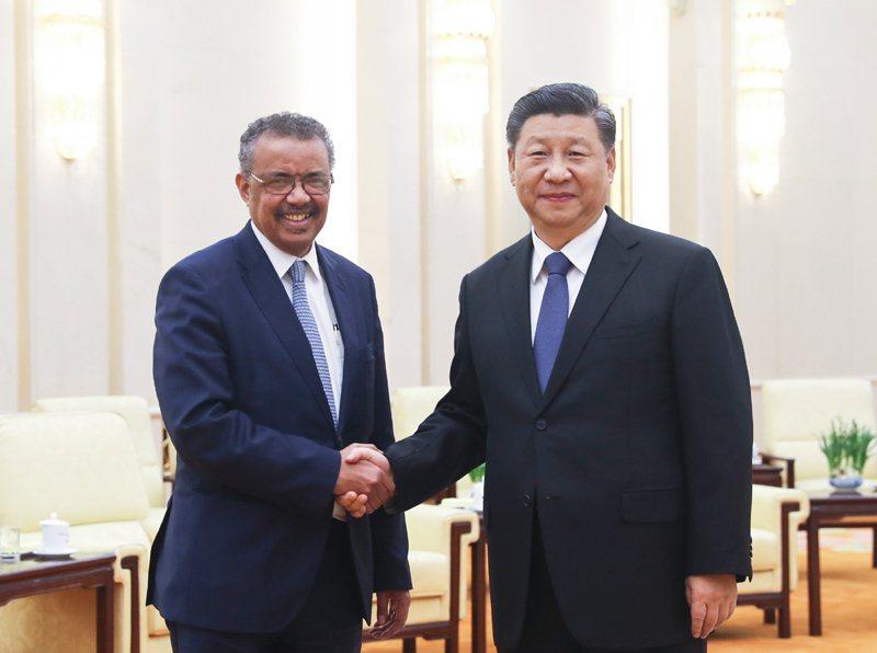 大陸國家主席習近平28日在北京人民大會堂會見世界衛生組織總幹事譚德塞。(新華社)