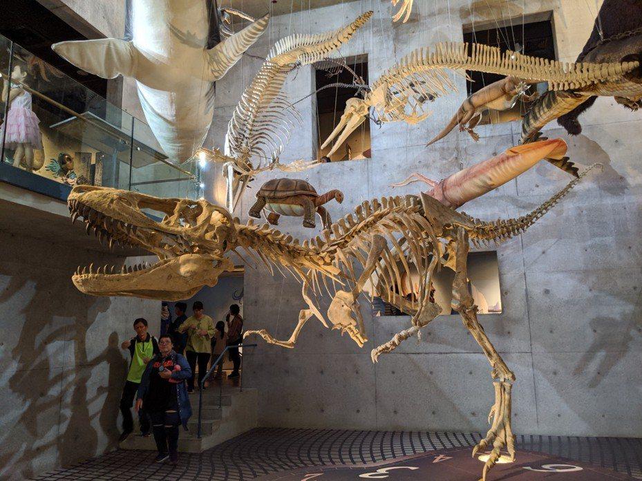 左鎮化石園區展館,各種遠古生物以骨骼模型、布偶重現。記者楊德宜/攝影