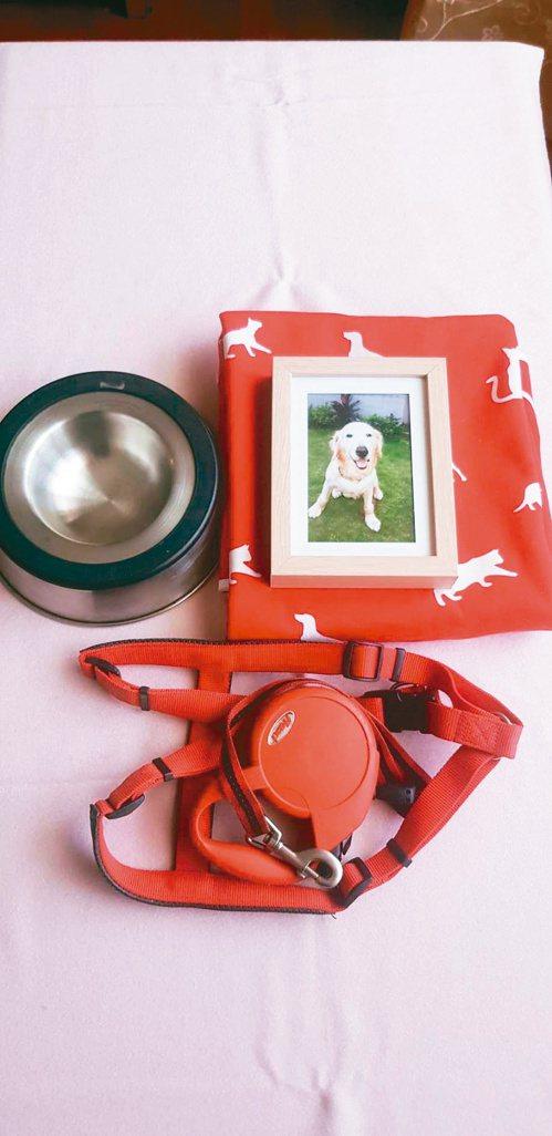 愛犬嘟嘟雖已過世,但主人仍保存著牠的飯盆與牽繩。圖/韓情提供