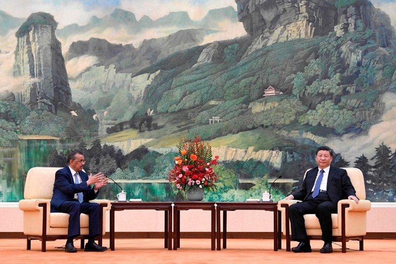 習近平日前於北京和WHO祕書長譚德塞會面。 圖/法新社