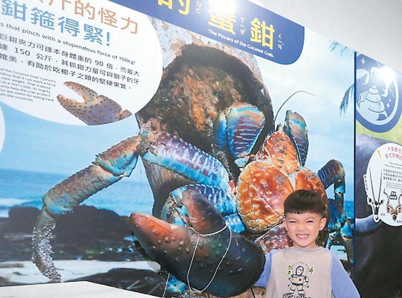「變變變!MOVE生物體驗展」透過穿戴互動,帶孩子了解各種動物。 圖/聯合數位文創提供