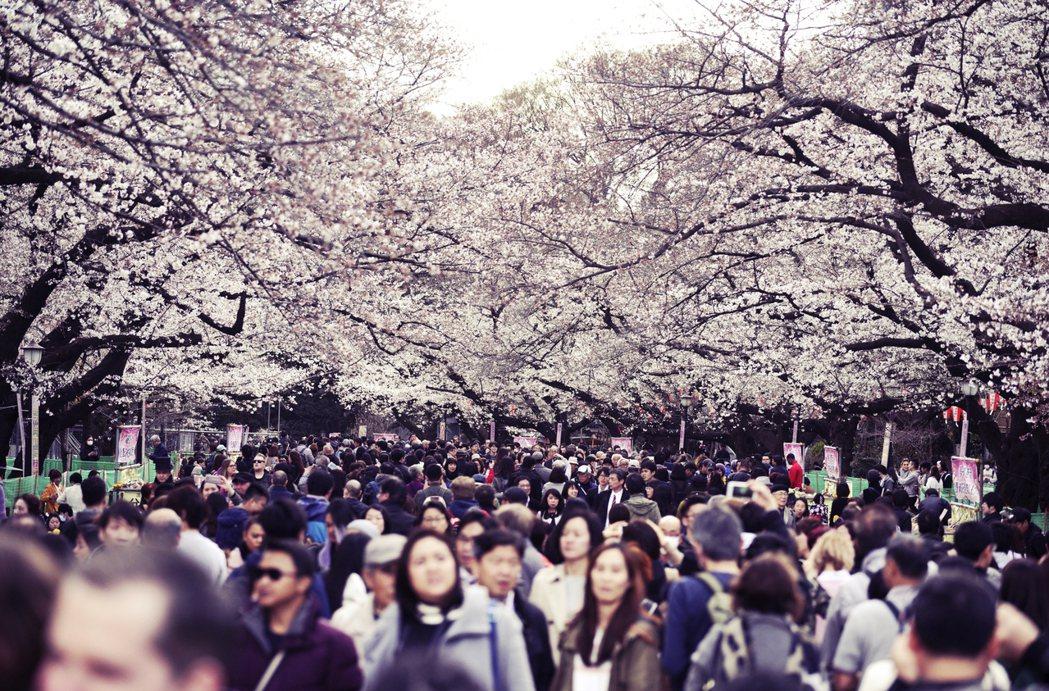 更慘的還有,時序進入2月,接下來就是日本的花粉症好發季節,許多有花粉症與過敏的民...