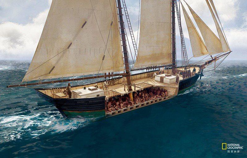 克羅蒂德號的貨艙成了110位非洲俘虜地獄般的牢籠。在橫渡大西洋的六星期航程中, 有人死亡,其他人則盼望一死解脫。多年後,倖存者芮朵施告訴訪談者,那裡面的味道「就足以殺了你。」 ART: THOM TENERY | SOURCE: JAMES DELGADO | SEARCH, INC.