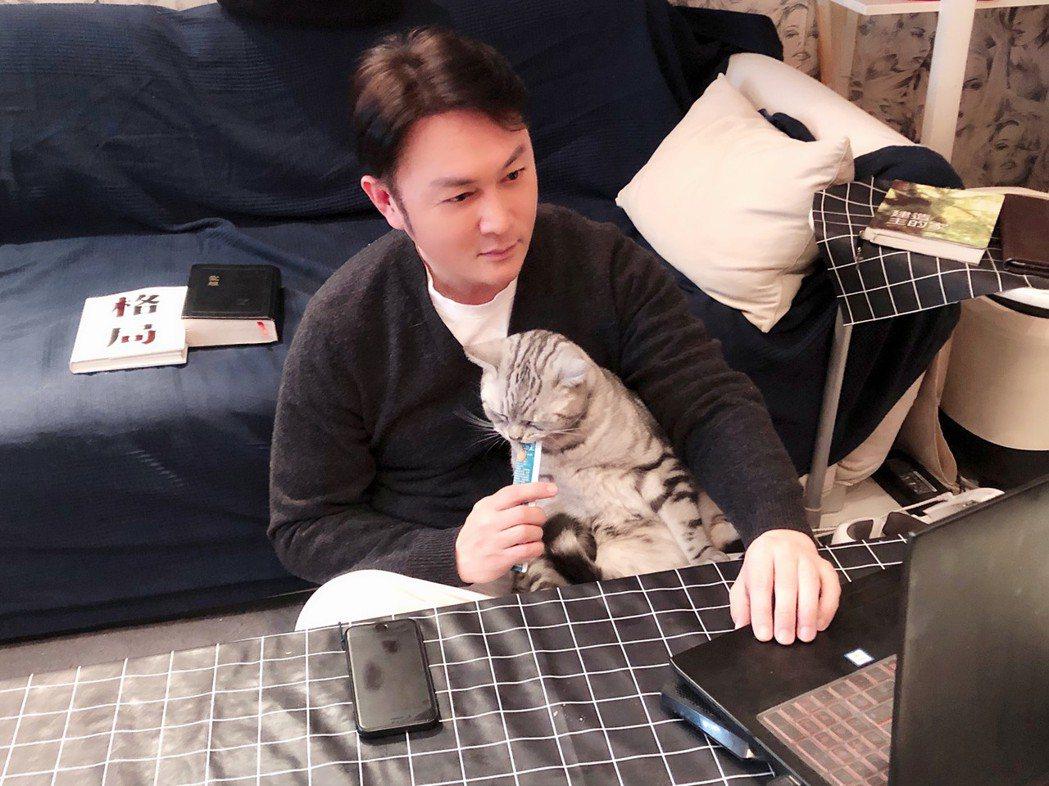趙擎目前在北京自我隔離和愛貓關在一起。圖/趙擎提供