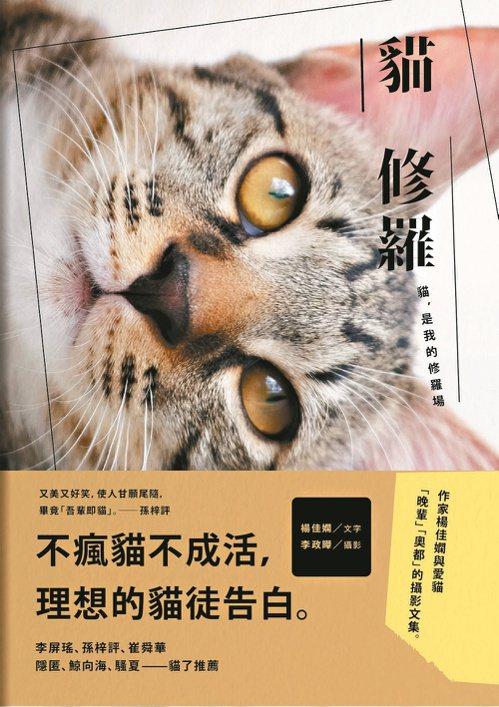 《貓修羅》書影。(圖/木馬文化提供)