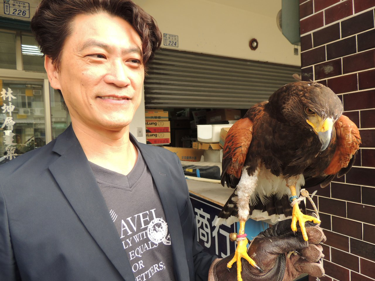 台東知名建築師林坤層飼養猛禽栗翅鷹「Look(路克)」六年多,人鷹情同父子鄉。 ...