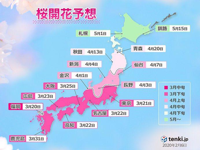 日本氣象協會日前公布了全國櫻花開花預測日期。圖/取自tenk.jp網站