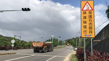 保護石虎減少路殺 苗栗台13甲6月底前實施區間測速