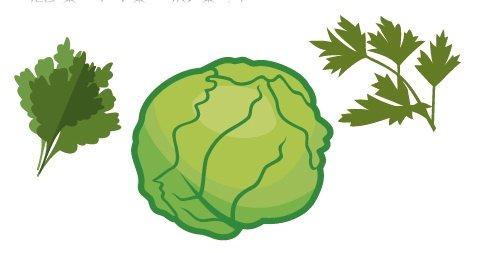 不適合冷凍處理的蔬菜質地較軟、水分多者,如葉菜類的高麗菜、白菜、菠菜等。 圖...