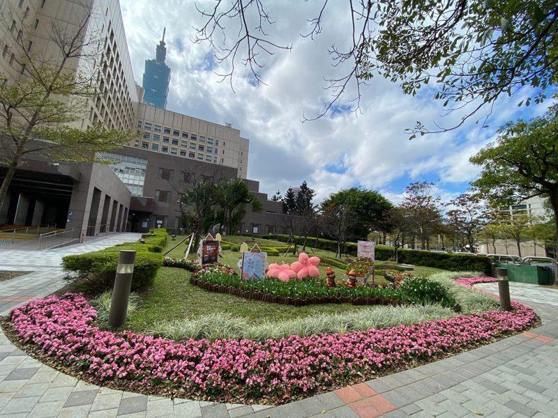配合一系列花季,台北市政府大樓北門變成秘密打卡景點,設置櫻花造型物、鬱金香花海等。圖/台北市公園處提供