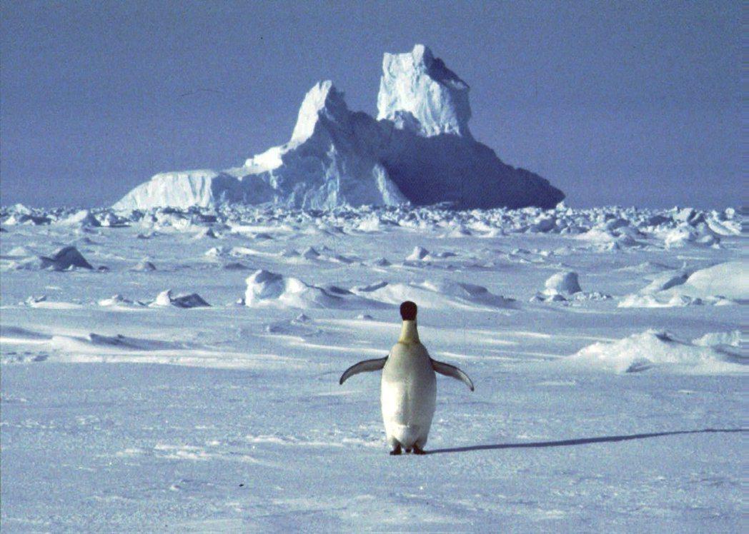 南極洲6日出現有紀錄以來最高溫攝氏18.2度。(美聯社)