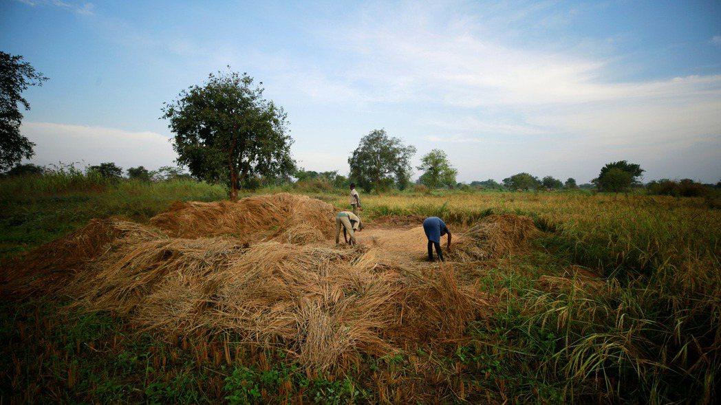 阿布加東南方的貝努埃省(Benue)。 路透