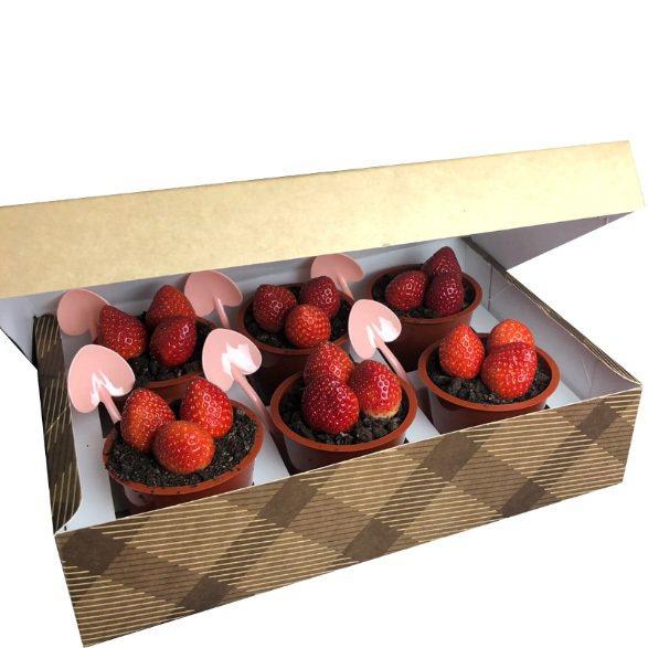 草莓盆栽蛋糕,全家行動購單盒售價399元、6盒售價1,350元、20盒售價4,0...