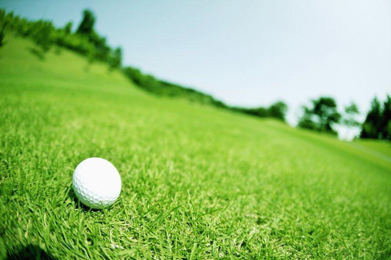 新冠肺炎疫情重創不少產業,不過卻有網友指出,現在高爾夫球場意外變超熱門。示意圖/ingimage