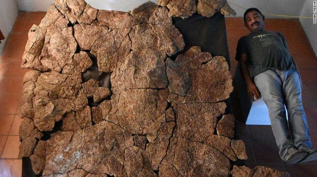 委內瑞拉古生物學家桑切茲(Rodolfo Sánchez)和新出土的地紋駭龜龜殼...
