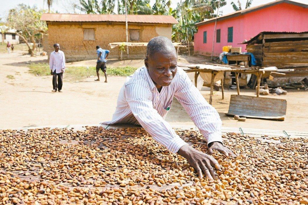 荷蘭的巧克力品牌「東尼寂寞巧克力」,致力提升西非可可農的生活。 圖/東尼寂寞巧克...