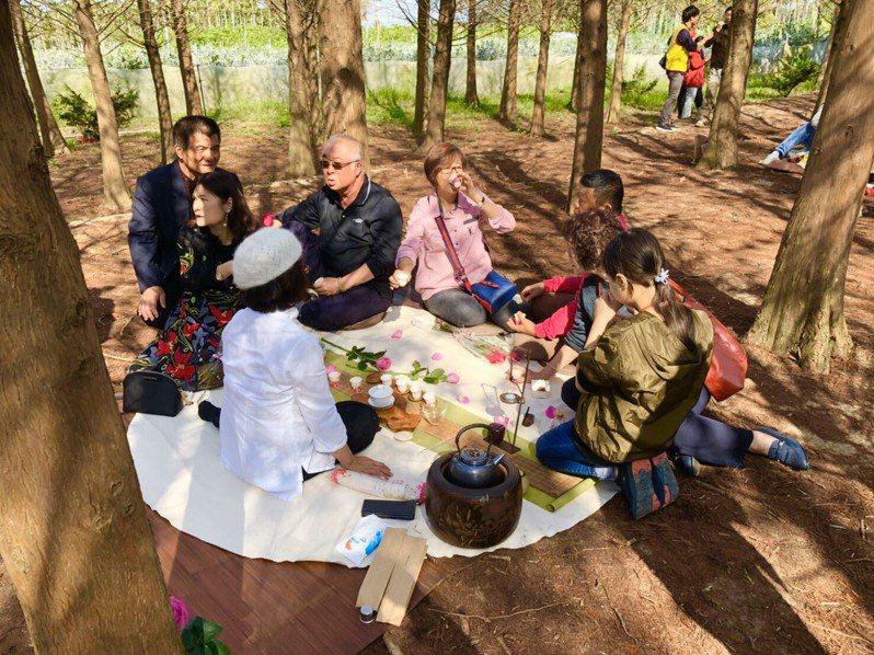 百對情人散步前往落羽松森林,一對對情人席地而坐,邊享受茶席,邊在林間自在的聊天,共同度過阿里山下浪漫的情人節。圖/歡喜財神爺廟提供