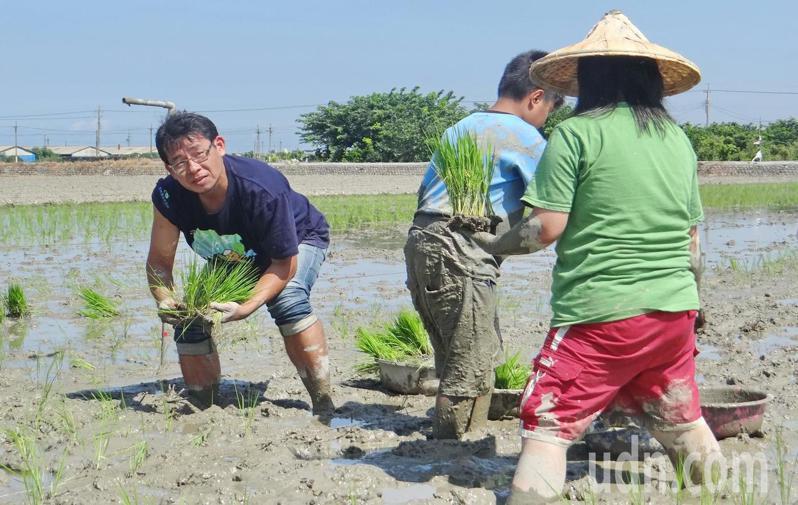進入春耕時期,久未下雨,出現缺水,水利會緊急調度後,灌溉無虞。記者蔡維斌/攝影