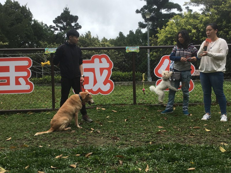 台北市動物友善設施又增添一處,位於南港區的玉成公園「玉成公園狗活動區」,今天正式啟用。記者張世杰/攝影