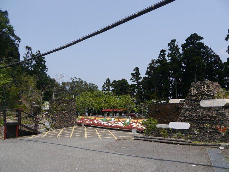 藤枝森林遊樂區今年內將會常態性開園,暫定每日開放500人入園。圖/本報資料照