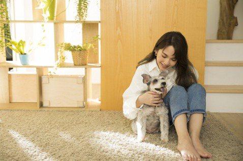 楊丞琳的新歌「泥土」,是透過向Peggy許哲珮邀歌,也是她獻給愛犬YUMI陪伴15年的愛禮,除了格外珍惜,她更想將這首「泥土」送給有小孩、有毛小孩的朋友們。楊丞琳坦言身邊有太多朋友,包括粉絲都已為人...