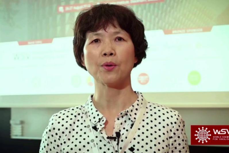 石正麗為大陸研究冠狀病毒的專家,她帶頭完成的「中國蝙蝠攜帶重要病毒研究」項目曾獲一等獎,人稱她「蝙蝠女俠」。(翻攝自YOUTUBE)