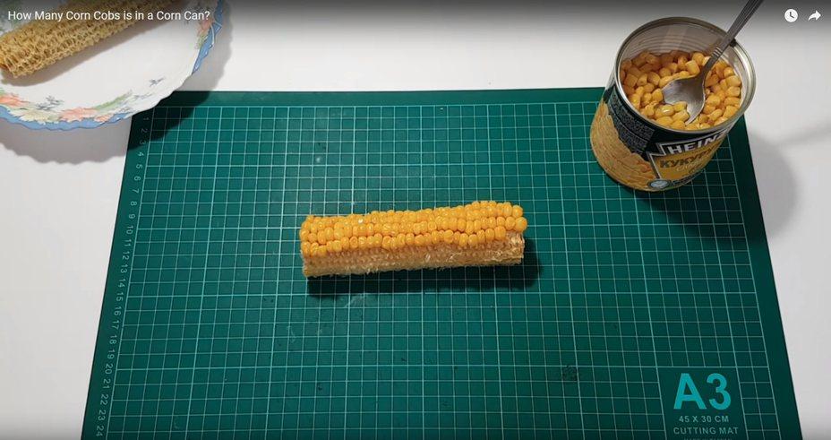 為了想知道玉米罐到底有多少根玉米,YouTuber做實驗解答。圖擷自歐洲麵包大展