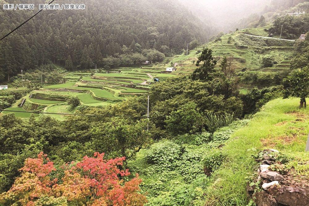 上勝町人口約1500人,將近90%是森林,因為優美的自然景觀,近年吸引了不少遊客...
