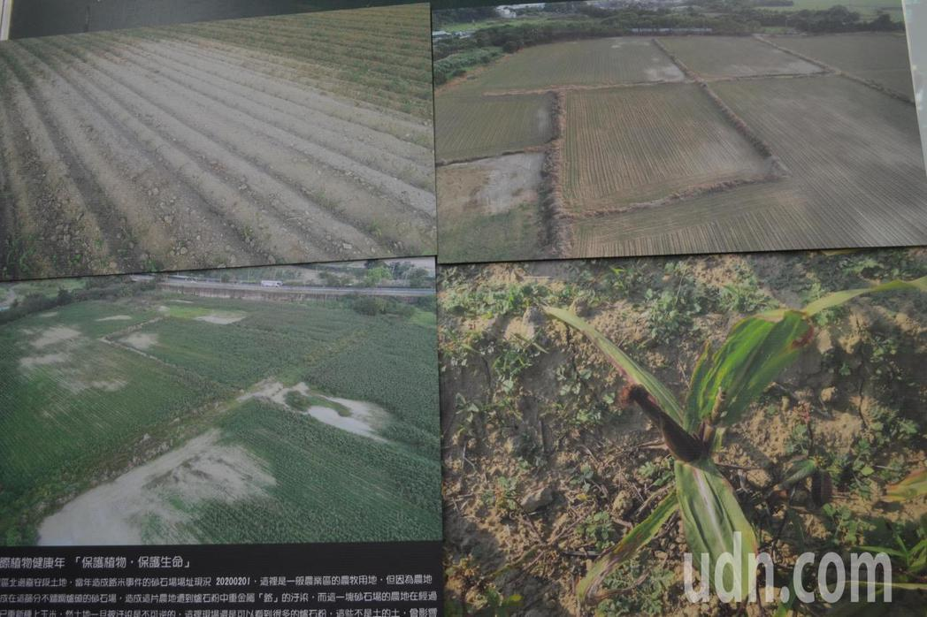 台南社大質疑汙染場址遭解除管制後,農作物仍枯萎,引發食安危機。記者鄭惠仁/攝影