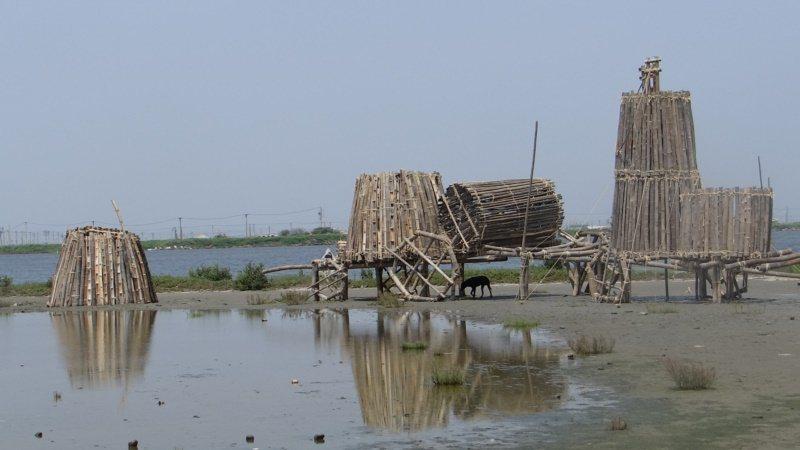 海水倒灌的農田,經村民和觀樹基金會努力,每年引進世界各國藝術家,打造成美麗的生態...