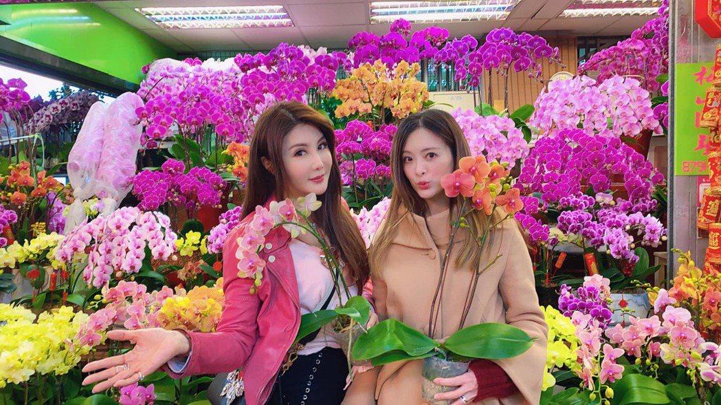 楊麗菁與劉真過年前還一起去花市。 圖/擷自楊麗菁臉書