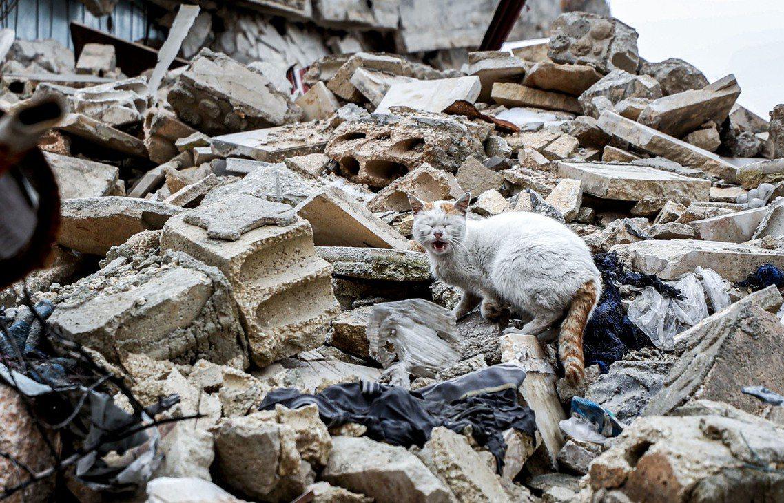 在當前的內戰中,拒絕且無力再收容更多難民的土耳其,已完全封閉易德利卜邊境。戰火封...