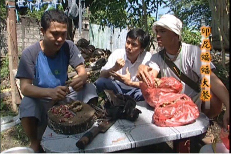 這波新冠肺炎據傳因武漢民眾吃蝙蝠而起,台灣外景節目主持人幾乎個個都曾為節目吃過蝙蝠,張勛傑說,「去年在印尼吃過,口感如雞肉,我還在台灣吃過蝙蝠大便,疫情發生後我一度擔心,那細菌會否在我體內潛伏至今,...