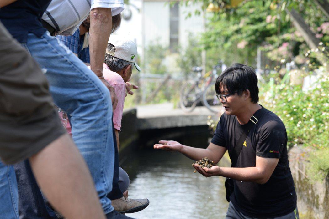 吳哲銘直接帶領遊客走進水圳感受乾淨水質,展示水裡的黃金蜆,以此推廣當地物產。 圖...