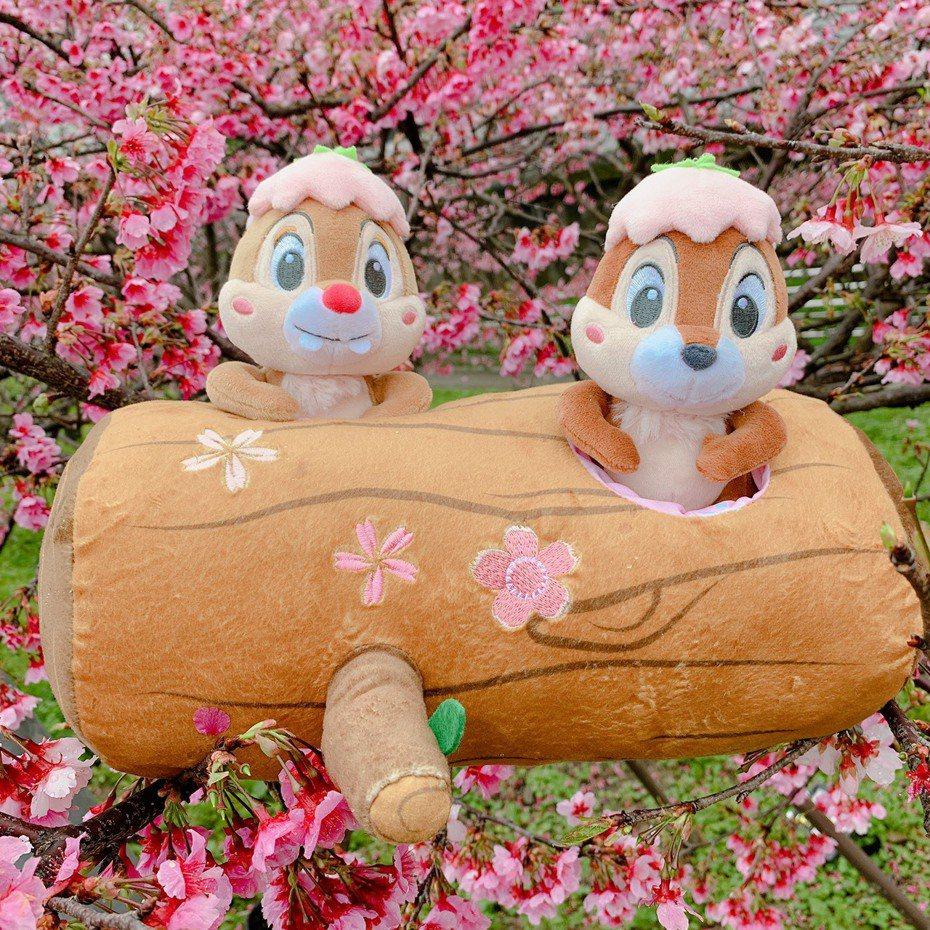 奇奇蒂蒂抱樹玩偶,7-ELEVEN於2月26日下午3點起開放限量預購,集滿6點加449元,限量6,000個。圖/7-ELEVEN提供