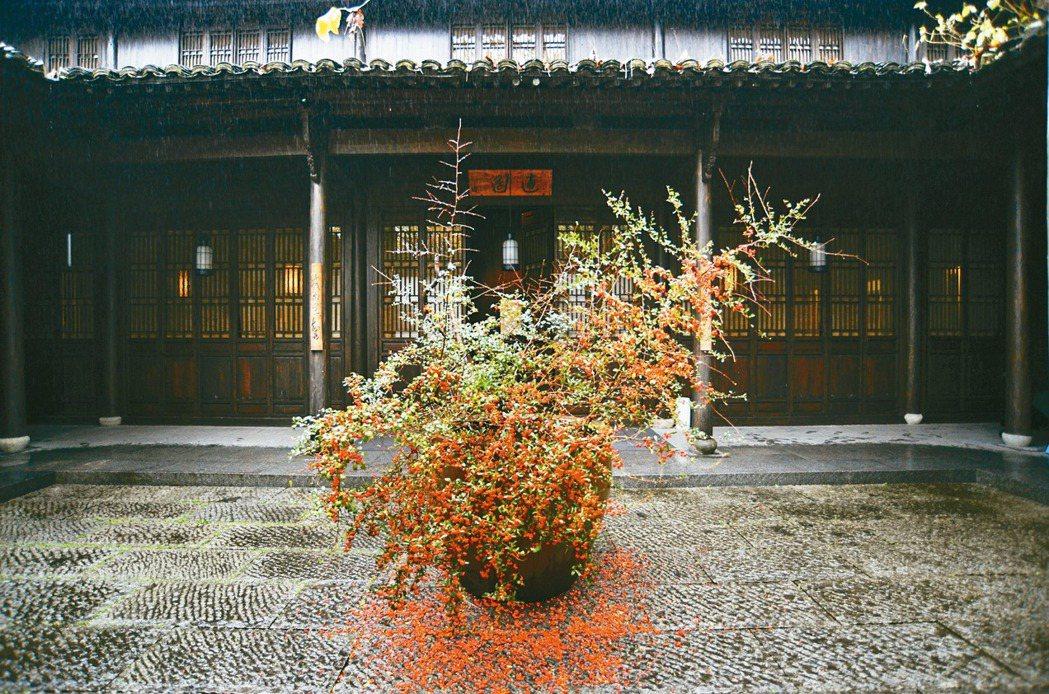 凌宗湧作品,杭州安縵法雲東方耶誕樹。 圖/CN Flower提供