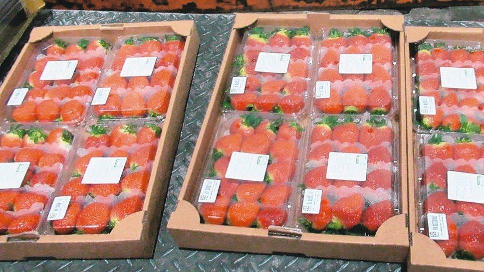 好市多進口的美國奇異果及韓國草莓被檢出農藥殘留不符規定,已遭退運或銷毀。 圖/衛...