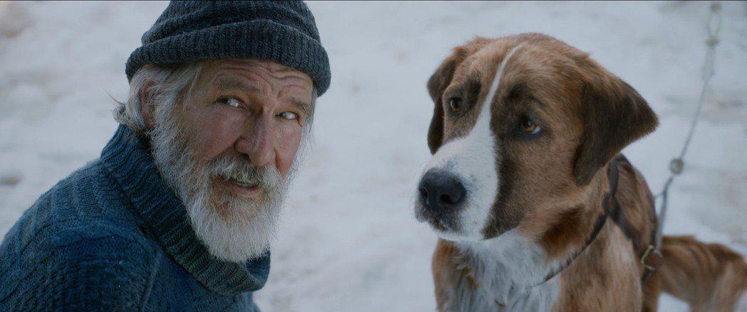 「極地守護犬」。圖/迪士尼提供
