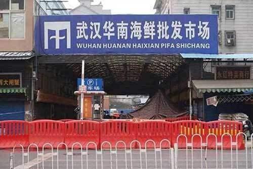 武漢的華南海鮮市場。圖/取自百度