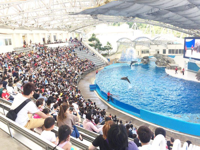 228連假首日,花蓮遊客多,遠雄海洋公園湧入3500人。圖/海洋公園提供