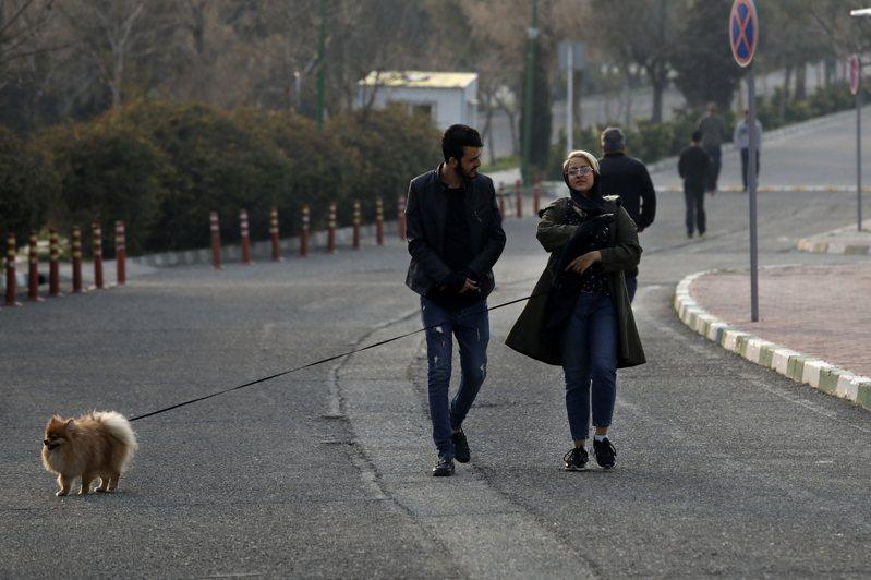 伊朗新冠肺炎疫情升溫,澳洲政府宣布,禁止外籍人士從伊朗入境。圖為伊朗人在街頭遛狗。 美聯社