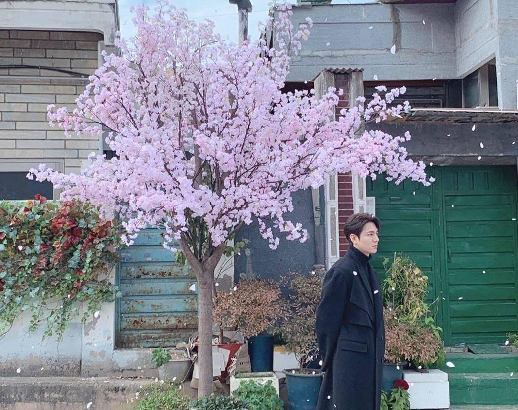 李敏鎬用盛開的花為民眾加油。圖/摘自IG