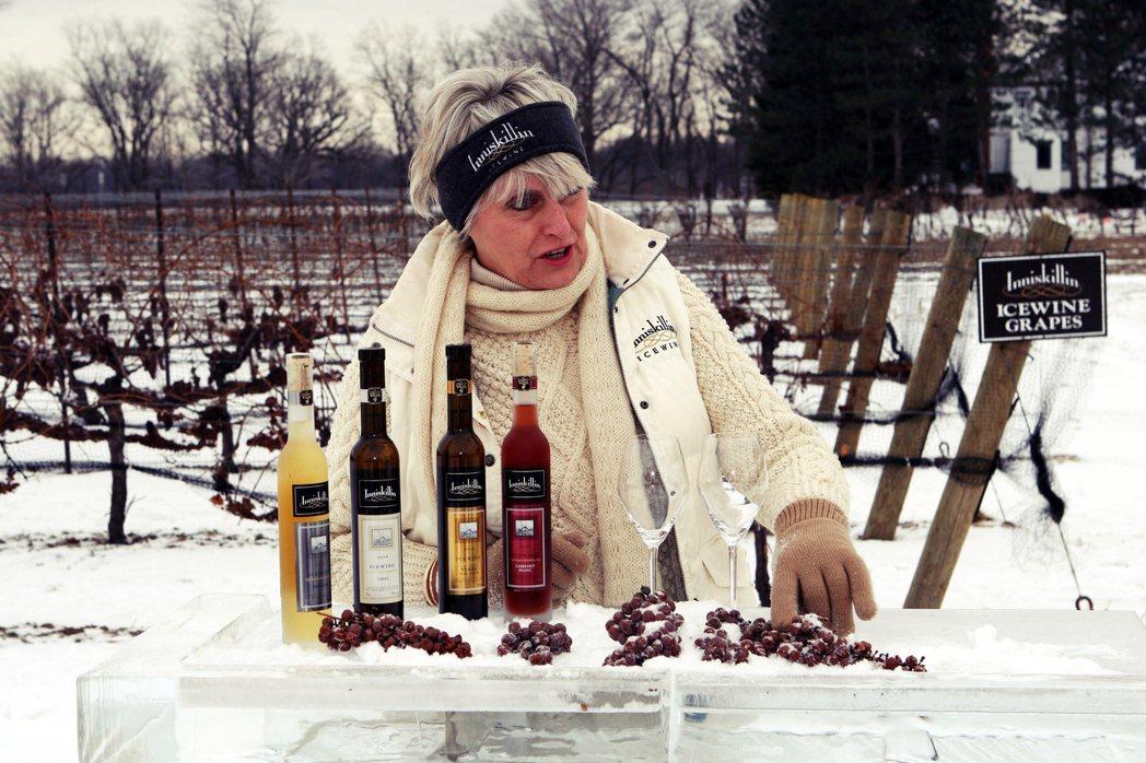 「雲嶺」(Inniskillin)等更商業化、產量穩定、價格較低的加拿大冰酒品牌...