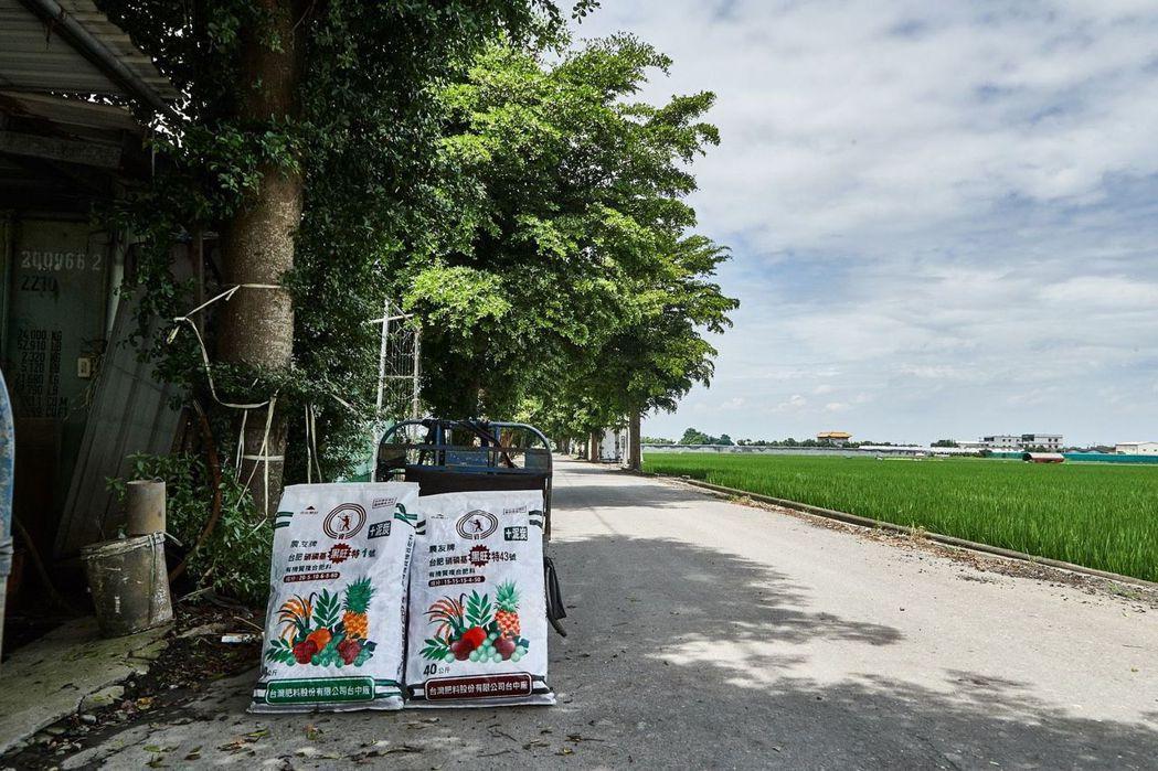 台肥農友牌黑旺複肥及錏磷複肥廣受農民肯定 台肥公司/提供