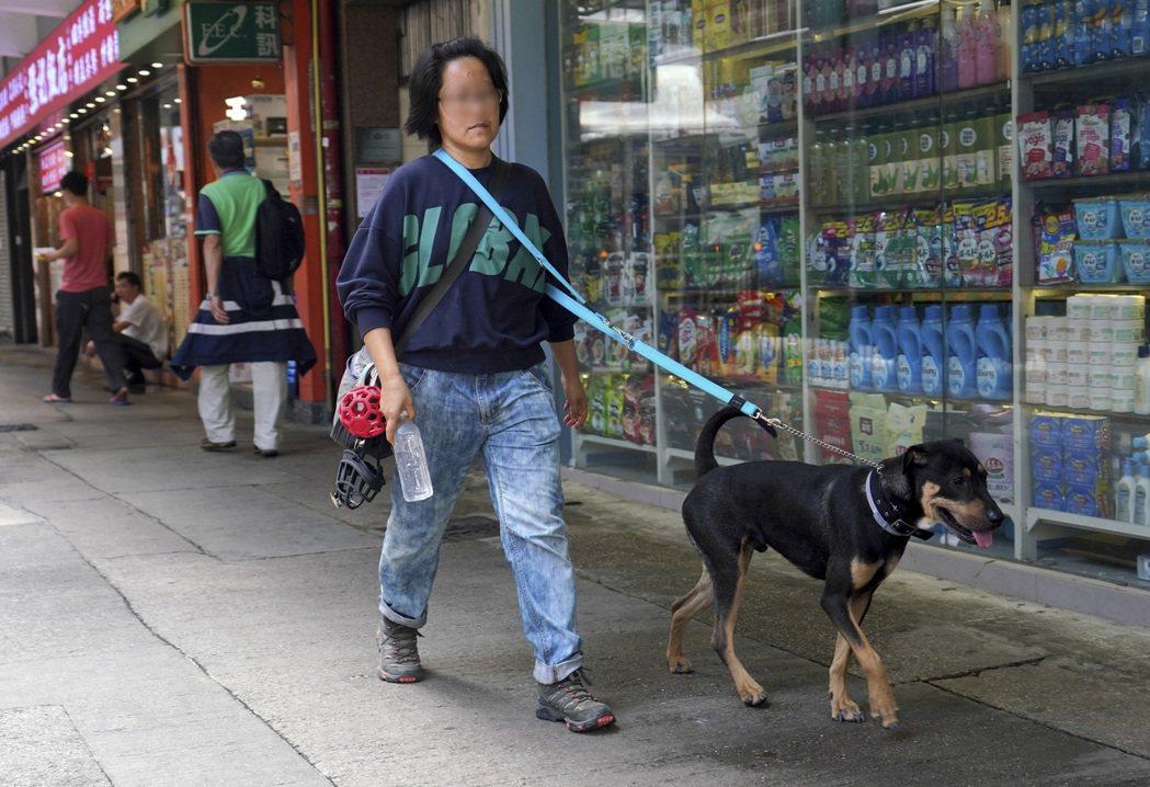 香港首例寵物犬確診新冠肺炎。 中國新聞社