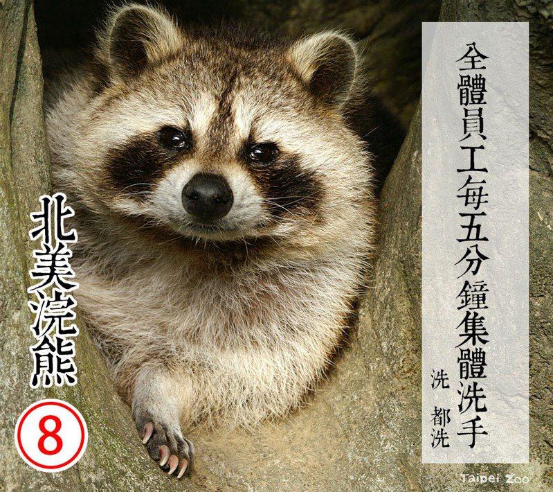 台北市立動物園昨日(4日)晚間貼出「園長候選人政見發表」。圖擷自「台北市立動物園」臉書粉專