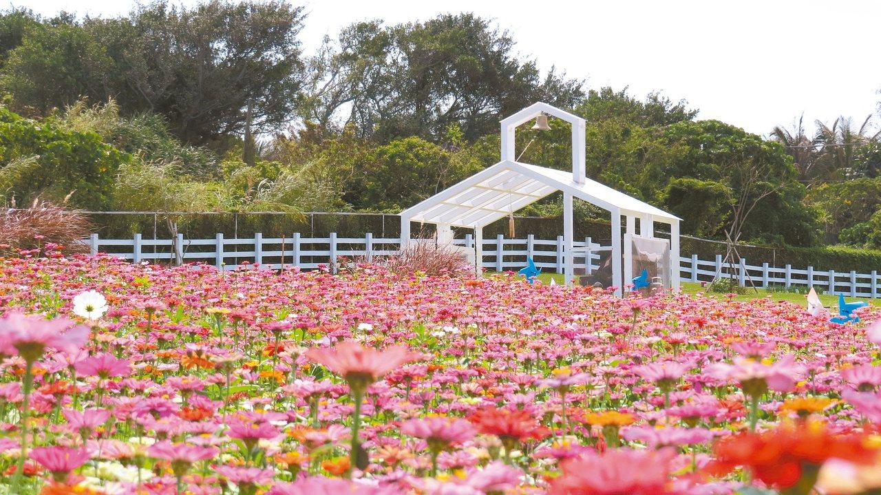 曼波園區是花蓮首座以自然式植栽設計為主的公共景觀場域,園區內有40多種植物,呈現...