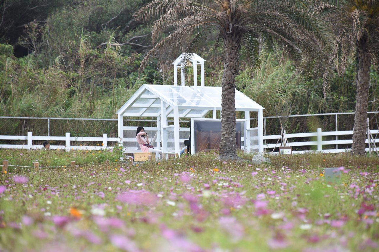 花蓮縣曼波園區有小型裝置藝術,成為遊客拍照打卡景點。 圖/王思慧 攝影
