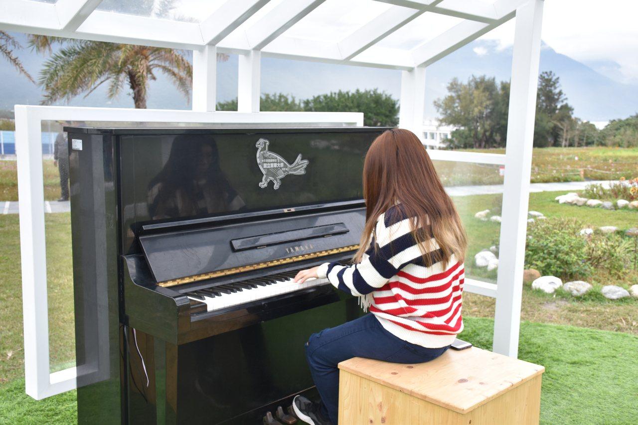 花蓮縣曼波園區有東華大學提供的鋼琴,讓遊客能彈琴展現才藝。 圖/王思慧 攝影
