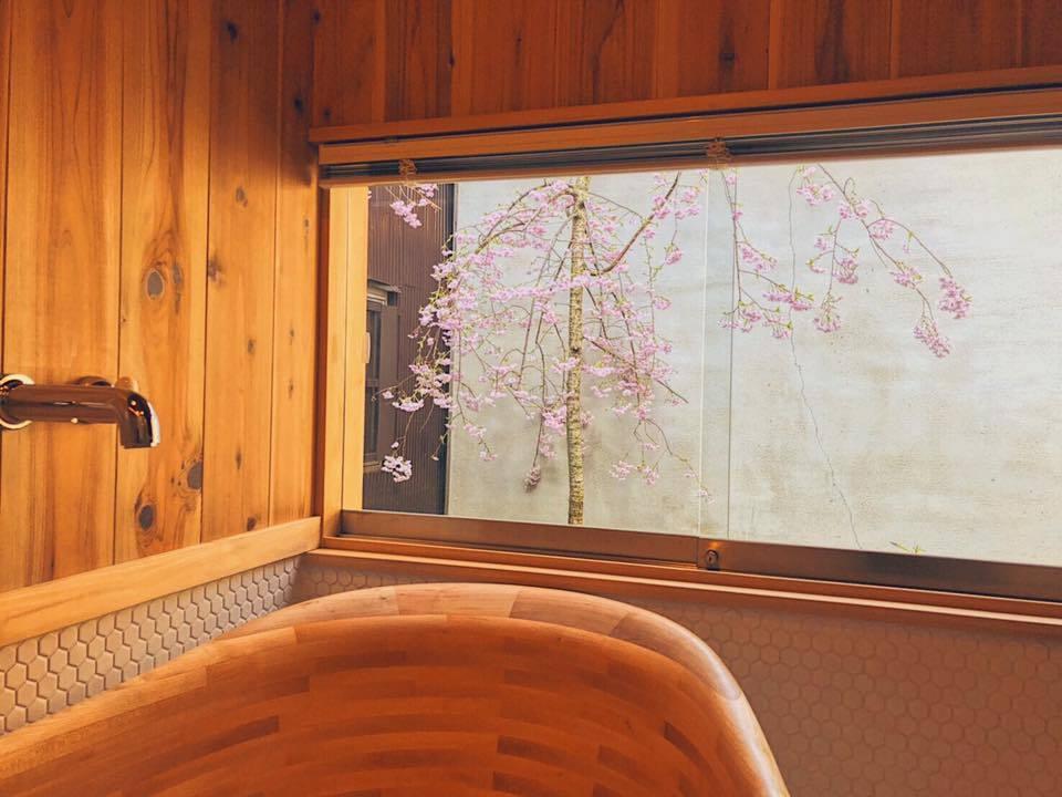 阿娟在旅宿庭院栽種櫻花樹,讓房客能邊泡澡邊賞櫻。圖/摘自臉書